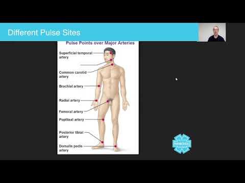 Paramedics Course - Assessing the Pulse - Australian