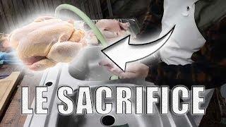 Operation-Poulet 004 - Boucherie - le sacrifice des poulets - saigner, plumer, vider