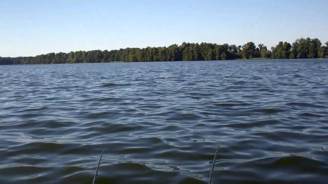 Reelfoot lake crappie fishing first day of fall josh for Reelfoot fishing report