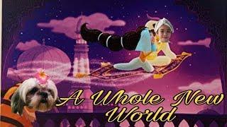 D'Cover A Whole New World - Brade Kane & Lea Salonga (Cover) by Deven & Devina