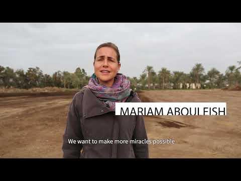 Greening The Desert   SEKEM Project 2019