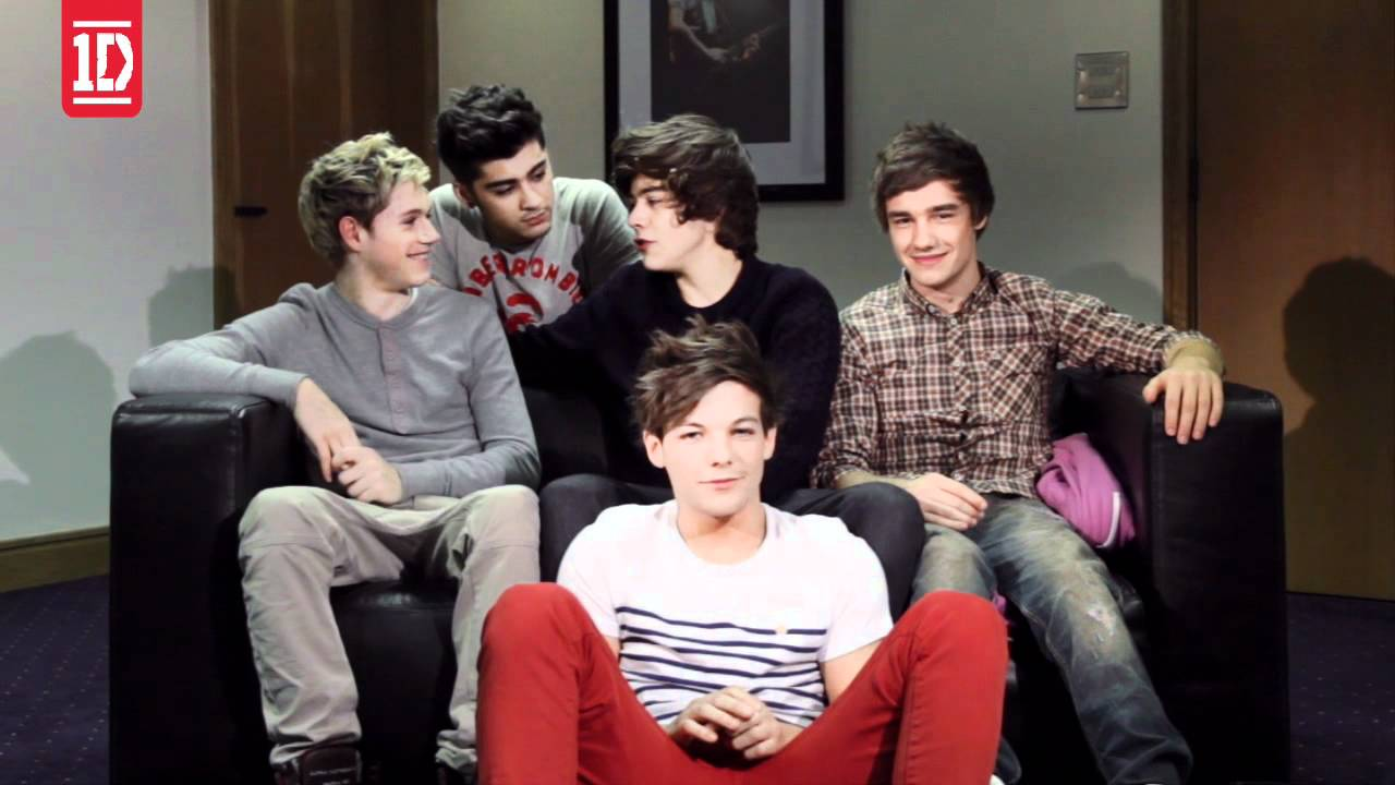 Download One Direction - Video Diary 3