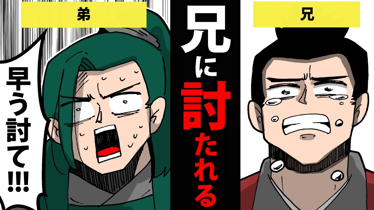 【漫画】島津歳久の生涯~兄に討たれた理由~【日本史マンガ動画】