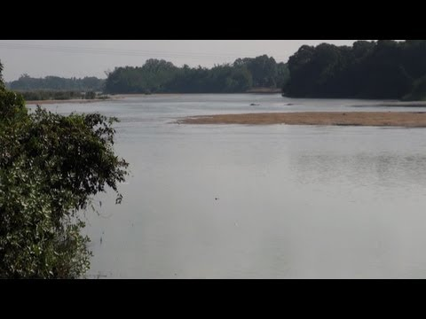 A Part of Kaveri River, Thanjavur