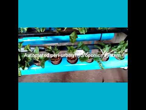 Baixar TheHydroponics - Download TheHydroponics | DL Músicas