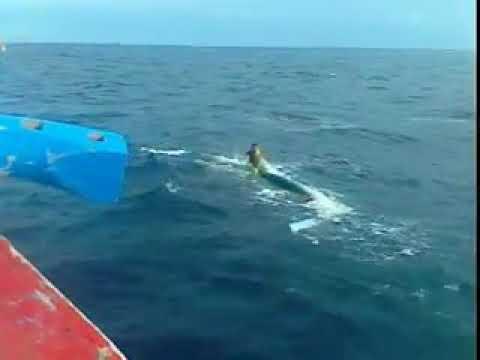 Orang karam di laut pidie yg d tolong boat aceh