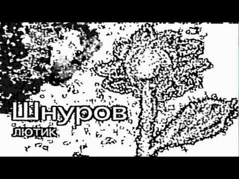 Клип Сергей Шнуров - Пардон
