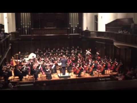 Symphony No. 5 in C Minor Mvt. 1