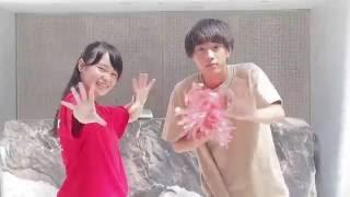 H28年度 別府青山・翔青高校 青嵐祭