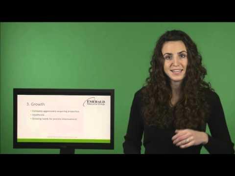 GEM Factor- Senior Systems Analyst