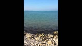 Поездка в Ильич. Дикий пляж. / Trip to Ilyich. Wild beach.
