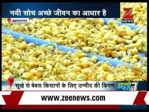 Dairy in Ahmednagar training impoverished farmers in animal husbandry