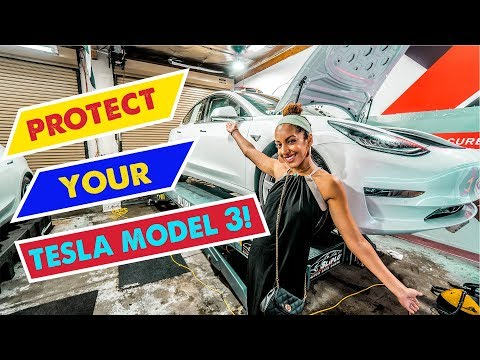 TESLA MODEL 3 PAINT PROTECTION! Is it worth the COST? | Sticker City Los Angeles