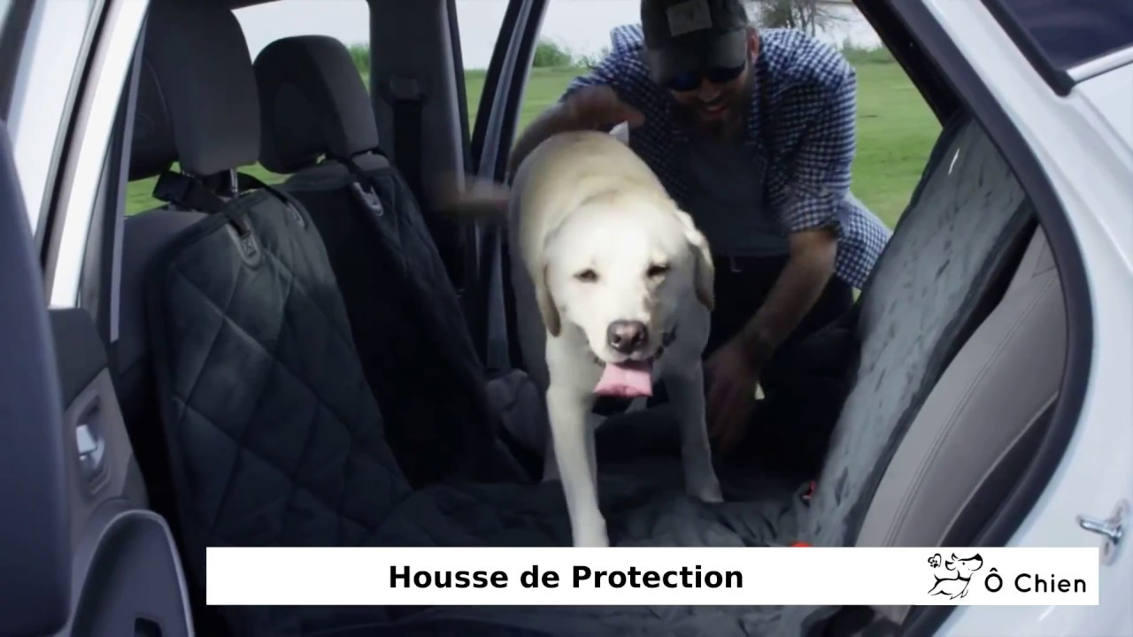 housse hamac de protection de si ge de voiture pour chien youtube. Black Bedroom Furniture Sets. Home Design Ideas