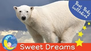 LULLABIES Lullaby For Babies To Go To Sleep Baby Music  Lullaby Songs Go To Sleep Bedtime Music