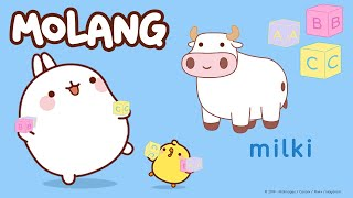 Learn Molang's ABC - R and P  | More @Molang ⬇️ ⬇️ ⬇️