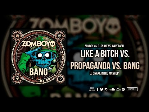 Like A Bitch vs. Propaganda vs. Terror Squad vs. Bang (DJ Snake Intro 2016 Edit)