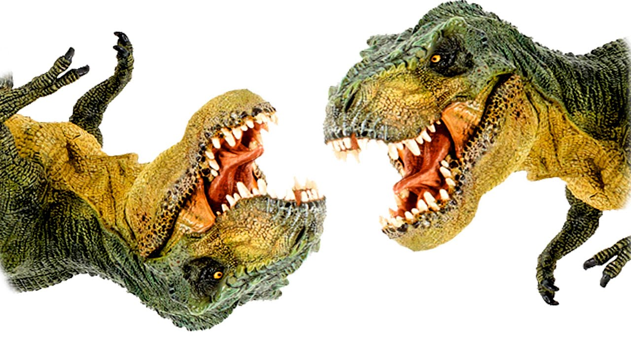 dinosaurs t rex vs trex dinosaur rexie protected his sister