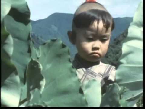 子連れ 狼 大五郎 『子連れ狼』の大五郎役は呪われているのか!?:
