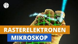 Wie ein Elektronenmikroskop funktioniert - Winzlingen auf der Spur - Planet Schule - SWR