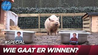 Katie voorspelt de winnaar van de boksbattle! - UTOPIA (NL) 2019