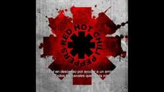 Red Hot Chili Peppers-Snow(Hey oh) Subtitulos español