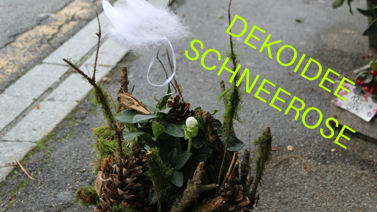 Deko Ideen Advent Diy Schneerose Christrose Naturverbundene Deko Idee Für Den Advent
