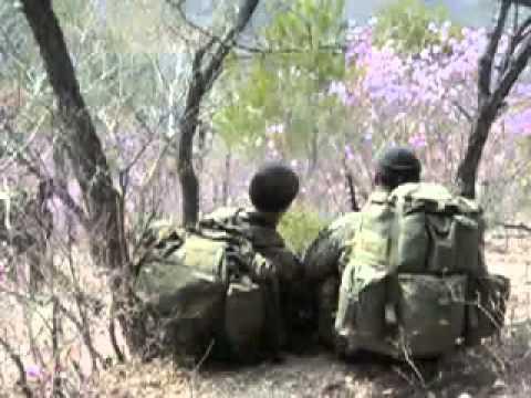 Marine Special Operations Battalion (MSOB)