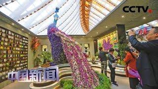 [中国新闻] 北京世园会 中国馆:尽展中华园艺之美 | CCTV中文国际