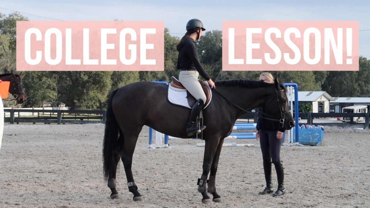 College Eq Team Lesson Vlog! | Equestrian Prep