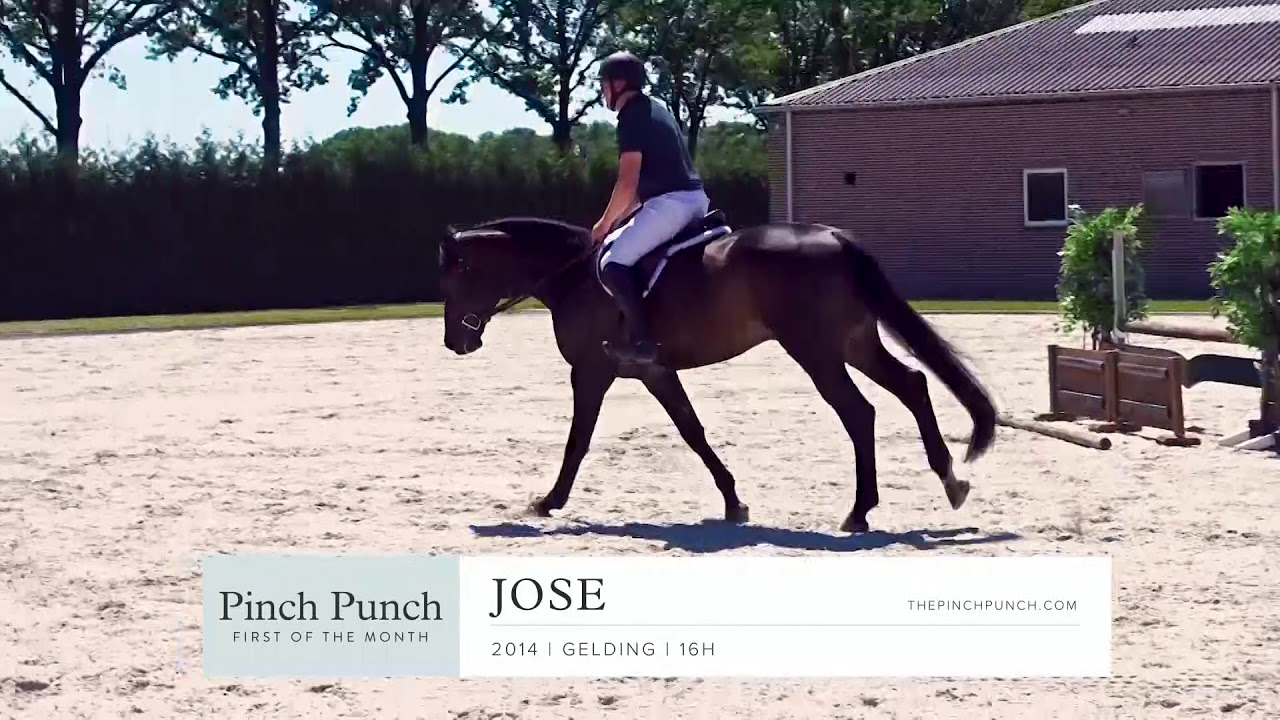 JOSE - Profile Video | PPFM: July 2019
