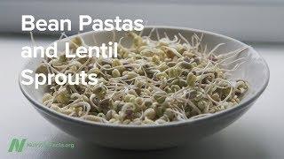 Luštěninové těstoviny a čočkové klíčky