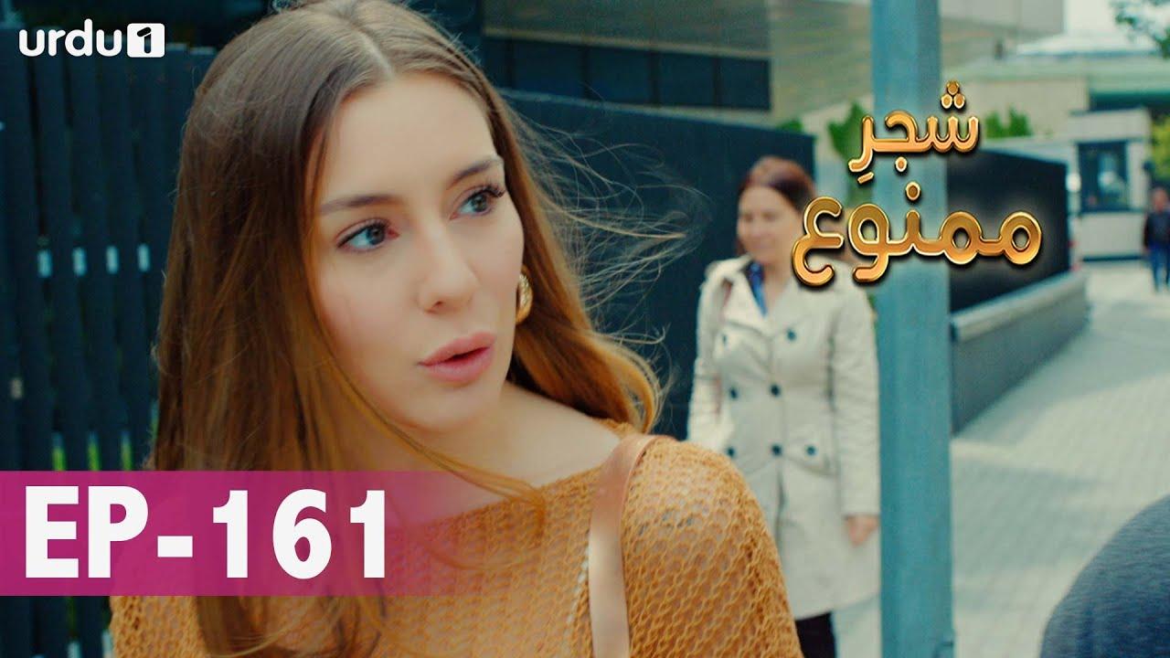 Shajar-e-Mamnu | Episode 161 | Turkish Drama  | Forbidden Fruit | Urdu Dubbing | 22 July 2021