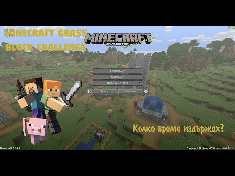 Minecraft - The Grass Block Challenge