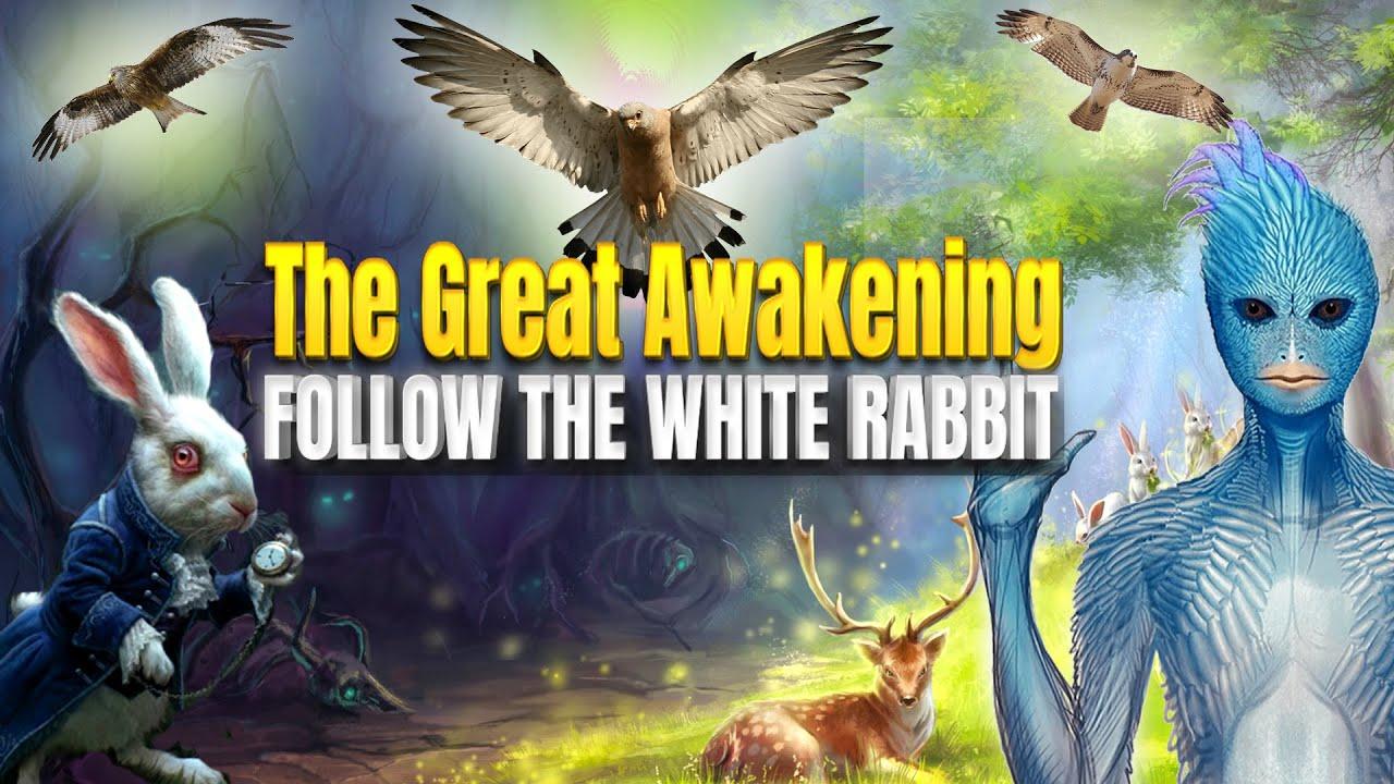 The Great Awakening Follow The White Rabbit Youtube