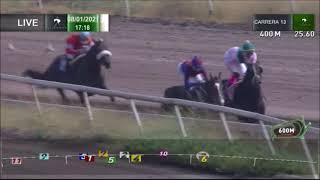 Vidéo de la course PMU PRIX WAIT A MOMENT