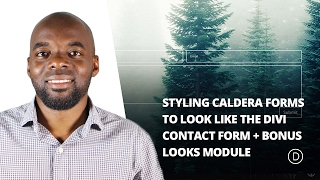 Styling Caldera Forms to Look Like the Divi Contact Form + Bonus Looks