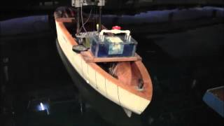 Roll damping of a ship model