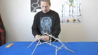 How to build a 30 strut tensegrity dodecahedron