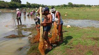 Fishing by villagers ( ग्रामीणों द्वारा मछली पकड़ना) by dk technical