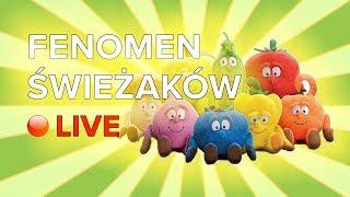 Fenomen Świeżaków LIVE !!!