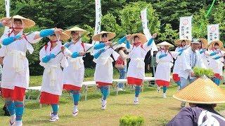 献上米づくりの祭事 お田植え祭に高校生らも参加