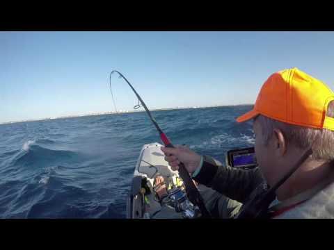 Fishin with Wojo - Big Blackfin