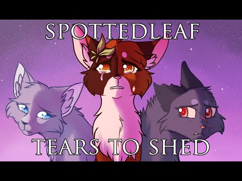 SPOTTEDLEAF MAP - Tears to Shed