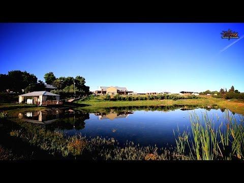 Surval Boutique Olive Estate - Accommodation Oudtshoorn - Africa Travel Channel.