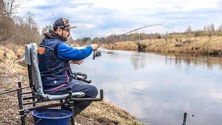 Рыбалка весной 2021. Фидер на малой реке. Чеснок и резаный опарыш сводят сума всю речную рыбу.