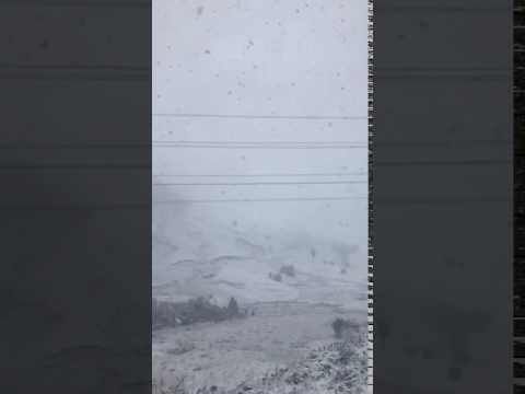 Snow on the Napier/Taupo highway