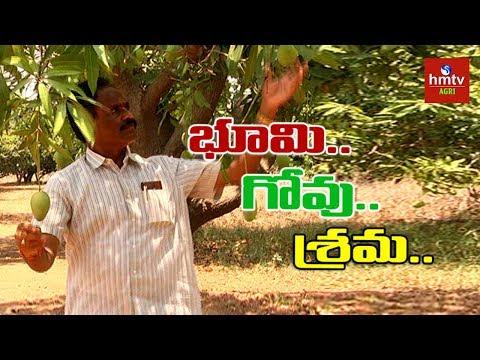 Natural Farming | Success Story Of Farmer Raji Reddy | hmtv Agri