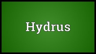 Hydrus Meaning