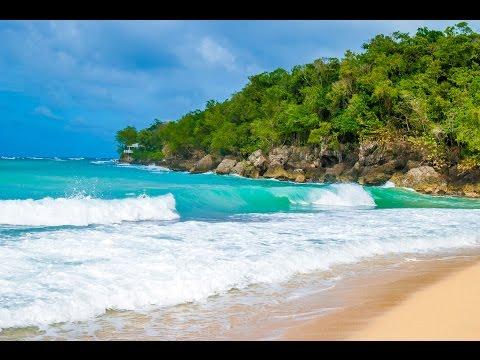 Ocho Rios, Jamaica - Dunn's River Falls & Bamboo Beach VIP 4K